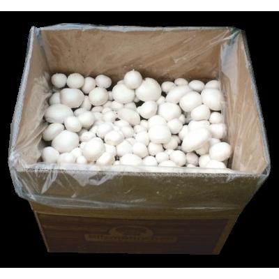 Σετ βιολογικής –ιδιωτικής καλλιέργειας μανιταριών Champignon  Βιολογικά Προϊόντα