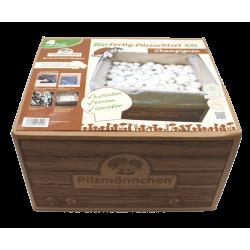 Σετ βιολογικής –ιδιωτικής καλλιέργειας μανιταριών Champignon